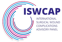 International Surgical Wound Complications Advisory Panel